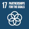 UN SDG GOALS 17