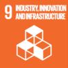 UN SDG GOALS 9
